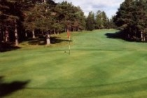 Profile: Bonar Bridge, Ardgay Golf Club's only greenkeeper, Caroline Munro