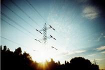 Essex clubs achieve electricity savings