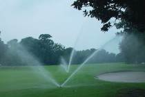 Environment body slams 15 golf courses over water usage