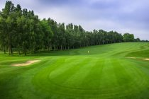 Golf group sees 'substantial growth' in rounds played this year