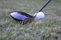Royal golf club bans plastic tees
