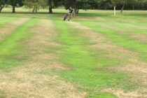 Why is overseeding essential?