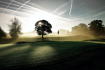 New poll highlights how attractive golf is during a pandemic