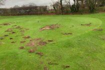 'Premeditated' vandalism could cost club £25,000 to repair
