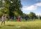 Golf scheme reduced antisocial behaviour in Birmingham